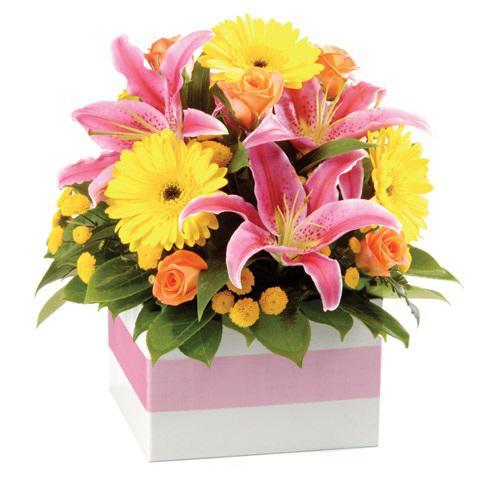 Цветы мед, заказ цветов в г прокопьевске